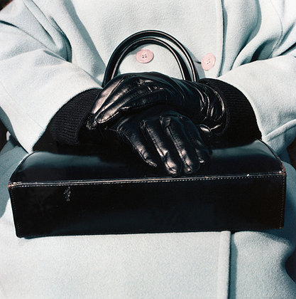 purse, gloves