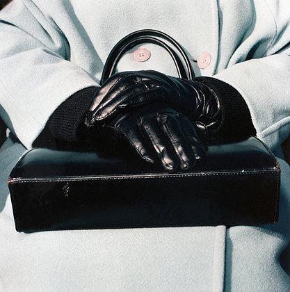 purse, gloves
